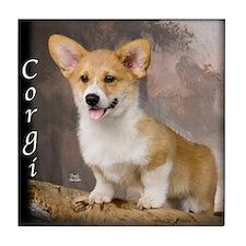 Pembroke Welsh Corgi Puppy Tile Coaster