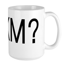 Anti Romney: RUKM (Are You Kidding Me?) Mug