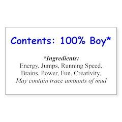 Rectangle Sticker - 100 boy