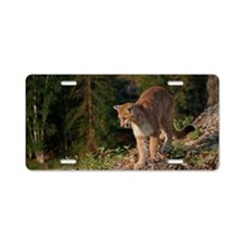Cougar 1 Aluminum License Plate