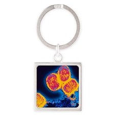 Smallpox variola viruses Square Keychain