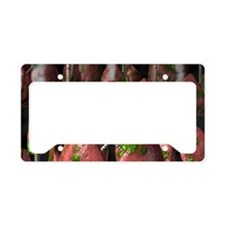 Smoker's lungs, conceptual ar License Plate Holder