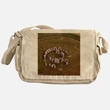 Aerial view of Stonehenge Messenger Bag