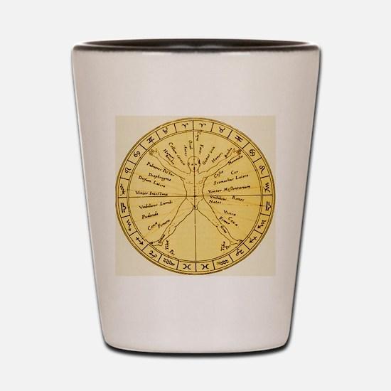 Astrological anatomy Shot Glass