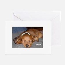 Napping_Pup Greeting Cards (Pk of 10)