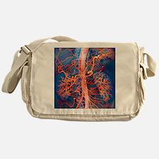 Abdominal arteries, X-ray Messenger Bag