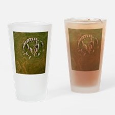 Aerial view of Stonehenge Drinking Glass