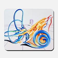 Artwork of inner ear Mousepad