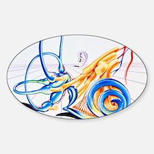 Artwork of inner ear Sticker (Oval)