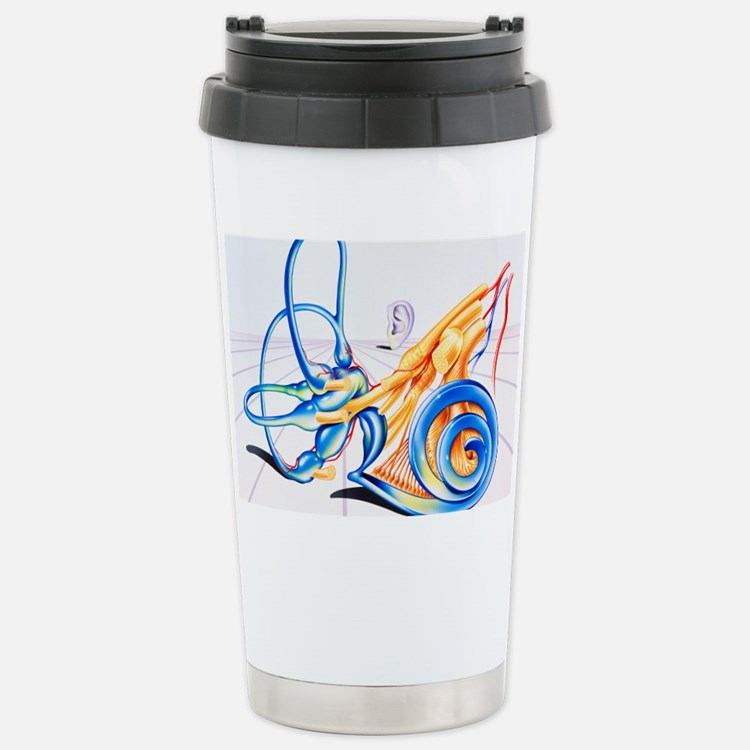 Artwork of inner ear Travel Mug