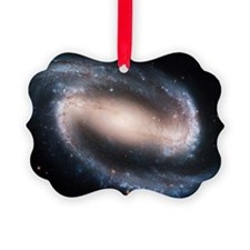 Barred spiral galaxy NGC 1300, HS Ornament