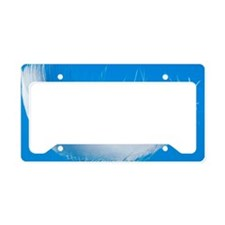 Bird feather License Plate Holder