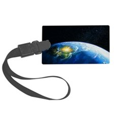 Artist's impression of asteroid  Luggage Tag