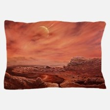 Artist's impression of surface of Tita Pillow Case