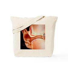 Artwork of section through human ear Tote Bag