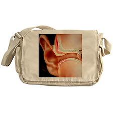 Artwork of section through human ear Messenger Bag