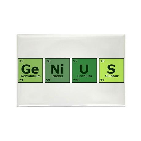 Genius Rectangle Magnet (10 pack)