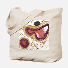 Blood vessels, light micrograph Tote Bag