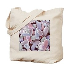 Balancing stone from inner ear, SEM Tote Bag