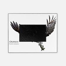 Osprey Picture Frame