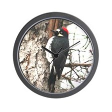 Calif. Redhead Woodpecker Wall Clock