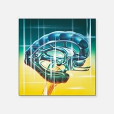 "Brain limbic system Square Sticker 3"" x 3"""