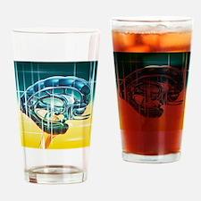 Brain limbic system Drinking Glass