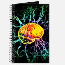 p3250165 Journal