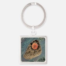 Cartilage cell, SEM Square Keychain