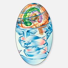 Brain limbic system Sticker (Oval)