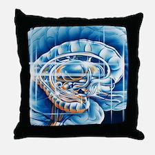 Brain limbic system Throw Pillow