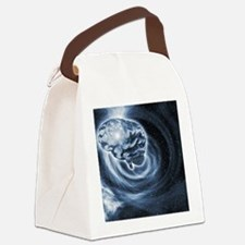 Brain in space Canvas Lunch Bag