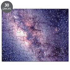 Central Milky Way Puzzle