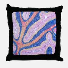 Cerebellum structure, light micrograp Throw Pillow