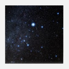 Canis Major constellation Tile Coaster