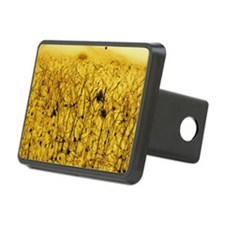 Cerebral cortex nerve cell Hitch Cover