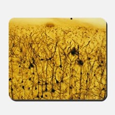 Cerebral cortex nerve cells Mousepad