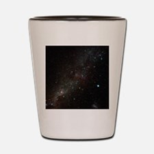 Carina constellation Shot Glass