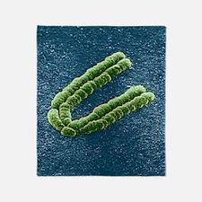 Chromosome, SEM Throw Blanket