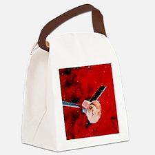 COBE satellite Canvas Lunch Bag