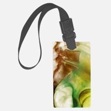 Coccyx and lower back, X-ray Luggage Tag