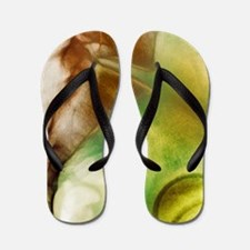 Coccyx and lower back, X-ray Flip Flops