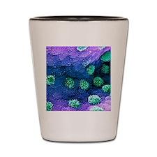 Colon goblet cells, SEM Shot Glass