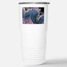Coloured SEM of a section throu Travel Mug