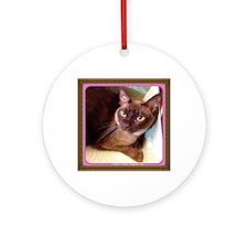 Champagne Burmese Box Cat Round Ornament