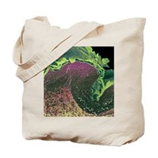 Coloured SEM of a section through skin la Tote Bag