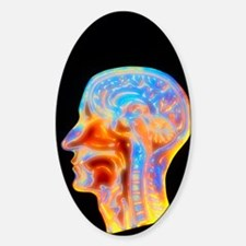 Coloured MRI scan of the human head Sticker (Oval)