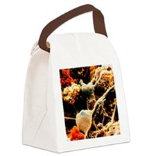 Coloured SEM of neurones and glia Canvas Lunch Bag