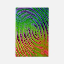 Coloured SEM of details of a huma Rectangle Magnet