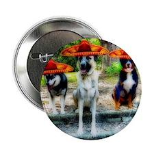 """Three Amigo Dogs 2.25"""" Button"""
